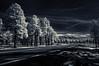 scene along AZ Hwy 180 (johngpt) Tags: wclwideconversionlens trees road tree highway fujifilmfinepixx100 hoyar72irfilter infraredfilter alongazhwy180 places mountain flagstaff arizona unitedstates us