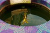 Reflet dans une pièce d'eau (Edgard.V) Tags: paris parigi petit palais bassin reflet riflesso reflexo reflection statue estatua or gold ouro oro ange angelo angel anjo