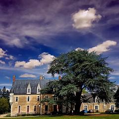 La Guyonnière - Montreuil-Juigné