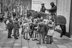 Children love horses. A los niños les encantan los caballos. (ithyrsus) Tags: nikon nikond5200 d5200 lightroom kids niños caballos horses policia police street streetphotography streetphoto fotocallejera fotourbana urban urbanphotography urbanphoto urbanlife vidaurbana madrid museodelprado spagna spanien spain espanha espagne españa eu europa europe ue