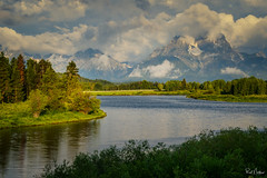 Mt Moran at Oxbow Bend - Grand Teton National Park (Reid Northrup) Tags: mountains mountain mountmoran grandtetonnationalpark wyoming landscape reidnorthrup water oxbowbend wood sky clouds grass lake tree forest
