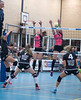 41170069 (roel.ubels) Tags: flynth fast nering bogel vc weert sint anthonis volleybal volleyball indoor sport topsport eredivisie 2018 activia hal