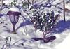 IMGP5805 - IMGP5810 B (RaymondDukes) Tags: columbisga snow 1172018 georgia strawberrytree