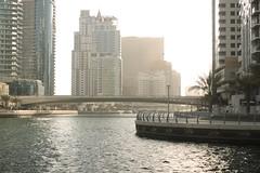 _MG_5043 (David_Hernández) Tags: arab emirates
