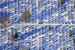 Cold Graves (Aerial Photography) Tags: by fs obb 06012017 5sr22863 fotoklausleidorfwwwleidorfde friedhof grabsteine kreuz laubbaum linien luftaufnahme luftbild moosburg münchenerstrase reihen schatten schnee stimmung winter aerial cemetery cross deciduoustree foliagetree leaftree lines mood outdoor rows shadow snow moosburglkrfreising bayernbavaria deutschlandgermany deu