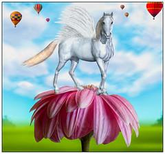 Trynity (Swissrock-II) Tags: digitalmania graphicart photoshop photomanipulation photoshopart lightroom flower daisy horse surreal surrealart fantasy clouds ballons inspiration 2018 january