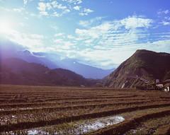 Sa Pa - rice terraces (>kindgott<) Tags: mamiya mamiya7 landscape mf mediumformat analog film rangefinder mamiyan65mmf4l colour fuji velvia 100 f velvia100f sapa vietnam asia terrace field rice sky outdoor 6x7 120