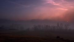 Finding The Orange (fred kottan) Tags: 16mm abend austria evening fog fujifilm landscape landschaft loweraustria marchfeld mist natur nature nebel niederösterreich österreich sonne sonnenuntergang sun sunset weinviertel xt2