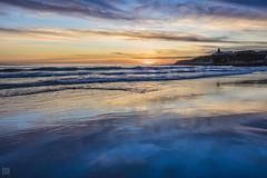 Sky Mirror, Santa Cruz (lycheng99) Tags: santacruz naturalbridgesstatebeach naturalbridges pacificcoast pacificocean sky dusk sunset color orange blue reflections mirror water california californiacoast