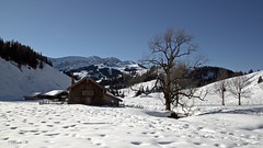 So it can always be!!! (Renata1109) Tags: baum gebäude himmel berg berge mountain schnee snow abhang chalet tree weis winter alpen alm blau sky bayern deutschland germany bavaria sonne sun blue wasser water landschaft landscape