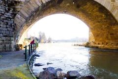 Debajo del puente-Explorer (Nati Almao1) Tags: ebropuenteypilar31118 ebro puenteypilar31118