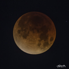 Totality (yeahbouyee) Tags: blood moon totality eclipse vixen polarie lunar