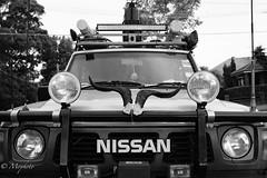 Rough & Ready (Mophoto_) Tags: nissan nissanpatrol 4x4 outback horns horn spotlight spots adventure touring around australia