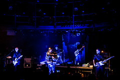 20180217_Romano Nervoso_Botanique-11 (enola.be) Tags: romano nervoso botanique 2018 geert vercauteren concert gig live enola bota brussel belgium