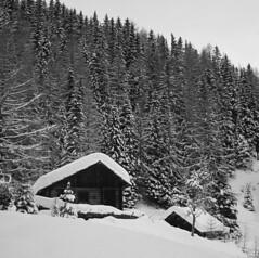 Houses (ZioDiego) Tags: hasselblad 500cm blackandwhite ilford fp4 mediumformat 6x6 badkleinkirchheim austria snow mountain ski landscape analog ziodiego