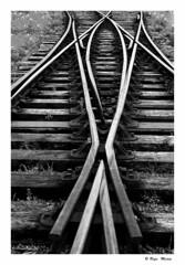CRUCE  DE CAMINOS  ( Belfast-Irlanda del Norte ) (RAMUBA) Tags: ferrocarril railway belfast irlanda blanco y negro bw
