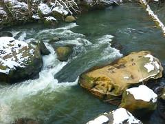Strömung (Jörg Paul Kaspari) Tags: irrel dieprüm fliesgewässer eifel naturpark südeifel gewässerlandschaft flus river winter strömung