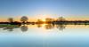 Sunset Shetlands (nicklucas2) Tags: landscape newforest janesmoor pond pony reflection sun sunset animal shetland