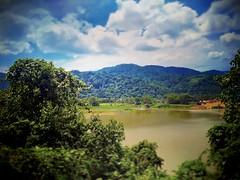 Kampung Orang Asli Serendah, 48200 Serendah, Selangor http://maps.google.com/?q=3.364348,101.617089&hl=en&gl=gb #Lake #mountain #tree #nature #travel #holiday #trip #Asian #Malaysia #Selangor #serendah #travelMalaysia #holidayMalaysia #山 #湖 #树木 #旅行 #度假 #亚