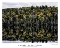 A Moment of Reflection (AaronP65 - Thnx for over 11 million views) Tags: fall ontario canada catherinelake