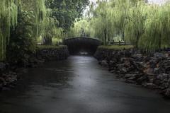 In a green reign (misunderstories) Tags: monsoonrain monsoon asia green vietnam huế imperialcity
