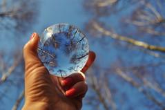 Crystal Ball Refraction (Eggii) Tags: ball crystal refraction