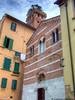 Torre Guinigi (fabricata) Tags: guinigi tower over roofs lucca torre italia italy tetti roof tetto toscana tuscany