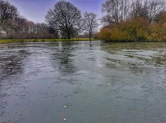 Ice Ice baby! 😀❄😀❄ (LeanneHall3 :-)) Tags: frozenlake lake trees branches eastpark hull kingstonuponhull green grass landscape samsung galaxys7edge
