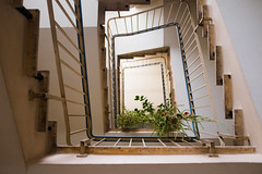Climbing Down (LukeHezekiah) Tags: plant germany sun green stairs bright