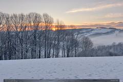 Zrození dne (jirka.zapalka) Tags: winter morning snow landscape meadow trees kudlovskavrchovina sunrise czech