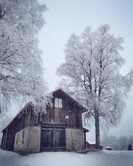 ~ our barn ~  Riddarhyttan, Sweden (Tankartartid) Tags: vinter winter magical magic mood moody västmanland norden nordic riddarhyttan europe sverige sweden frostytrees frosty trees snow hus building farm barn ladugård frostigaträd träd frost snö pålandet landsbygd countryside instagram ifttt