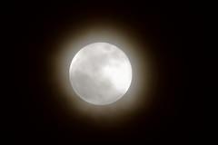 Blue Super Moon,Aberdeen_jan 18_835 (Alan Longmuir.) Tags: grampian aberdeen night moon bluesupermoon