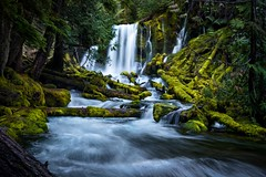 Lower Downing Calling (Matt Straite Photography) Tags: waterfall water stream river nature landscape land oregon pacific pacificnorthwest tree green moss outdoor wet underwater
