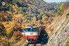 Autumn near Berende (BackOnTrack Studios) Tags: freight train bulgarian railways tbd 06 301 06301 sulzer diesel locomotive coal cargo autumn foliage trees nature mountains kalotina stanyantsi line 11 branch rail railway