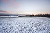 Sne fuld dag (Sarah7ever) Tags: snow winter krike kirke aften lyserød villa træer