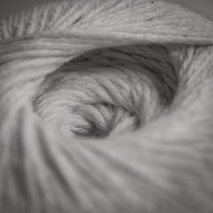 enroulé 1 de 2 (cjuliecmoi) Tags: noiretblanc blackandwhite macrophotography macro macrophotographie
