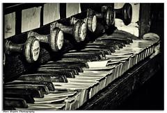 ''Seen better days'' (marcbryans) Tags: portlanddorset church organ keyboard disrepair musical instrument nikond500 tokina100mmf28macro