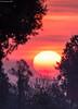 Succede al mattino (DiegoGuidone) Tags: natura alberi prati erba picture nice canon eos italy italia art desktop sfondi sfondo tema diego guidone belle foto colori colors photo photografy fotografia pictures geotagged landscape light photocard wallpapers good cove alla allaperto scogliera riflessi acqua calma crepuscolo tramonto eod 6d exposure nuvola cielo lac de places moulin lago saline cervia fiume persone nella skyline albero