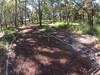 G0121356 (harleyhurricane1) Tags: line zip zipline ziplinepark dadecityflorida treehoppers centralflorida largestziplineparkincentralfl dadecity