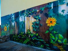 Darkissed Dayze (Steve Taylor (Photography)) Tags: sunflower ivy darkissed dayze fern graffiti mural streetart uk gb england unitedkingdom greatbritain margate foliage tree trunk leaves flower perspective darkkissed