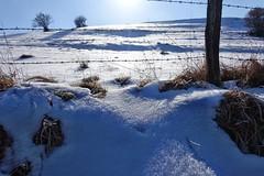 Genfbachtal (mama knipst!) Tags: genfbachtal nettersheim eifel witner schnee snow februar deutschland germany