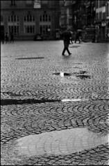 Jour de gris (Rachelnazou) Tags: caffenol blackwhite minolta film ilford analog argentique