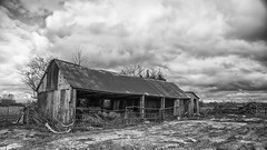 ricketty barn (HHH Honey) Tags: sigma2470lens sonya7rii wiltshire landscape blackwhite bw clouds