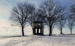Tower Blue (socalgal_64) Tags: carolynlandi indiantower nazarethpa pennsylvania winter cold tower old history historicalsite trees blue white footprints nature landscape outdoors outside usa stark treeline hilltop