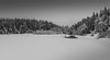 Winter landscape (Tore Thiis Fjeld) Tags: norway oslo nordmarka øvremovann lake forest nature winter landscape trees cold snow snowy water mono bw blackwhite outdoors sonya6000 solitude peaceandtranquility