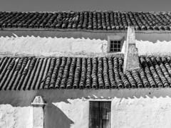 Spain - Badajoz - Fuente del Arco - Cortijo by Ermita Nuestra Señora del Ara (Marcial Bernabeu) Tags: marcial bernabeu bernabéu spain spanish españa español extremadura extremeño extremeña monocromo monochrome badajoz fuente arco fuentedelarco cortijo ermita ara tiles top roof tejado tejas architecture arquitectura