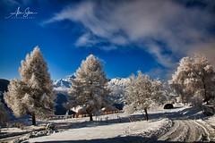 Alpian Serenity (Manigod, France 2010) (Alex Stoen) Tags: 5dmk2 alexstoen alexstoenphotography canon canoneos5dmarkii christmas2010 collection france manigod