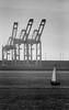 sailing in Long Beach, CA (carlfieler) Tags: longbeach sailboat pier docks infrastructure shipping canona1 canonfd fd500mm 500mm 500mmmirrorreflex mirrorreflex socal southerncalifornia arista aristaeduultra monochrome monochromefilm 35mm 35mmfilm analog seascape