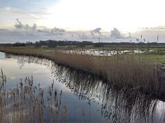 20180121 02 De Onlanden (Sjaak Kempe) Tags: 2018 winter sjaak kempe nederland netherlands niederlande provincie drenthe de onlanden