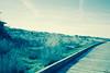 Dame pista! (elojeador) Tags: daimiel tablasdedaimiel pasarela camino hierba mata matorral matojo caseta madera parque yrápido elojeador